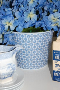 june shop pics 025
