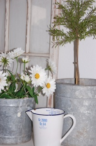 june shop pics 068