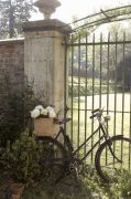 gate and bike