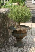 rosemary urn