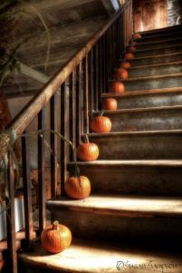 pumpkins-on-stairs