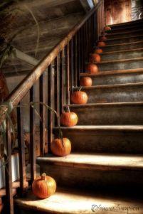 pumpkins-on-stairs