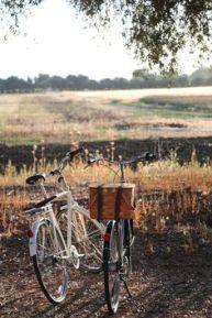fall-biking